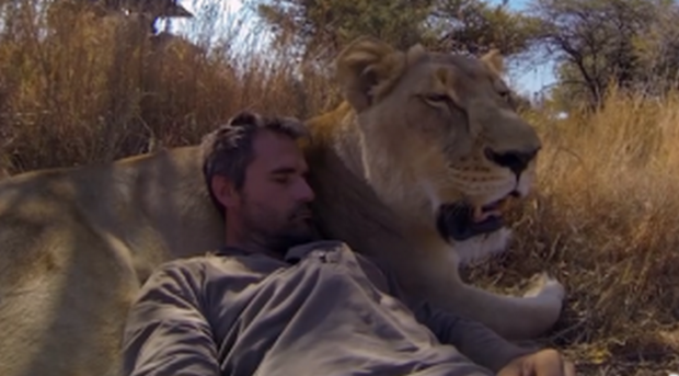 animal-communicator-kevin-richardson-with-lion-300x166 (Cópia)