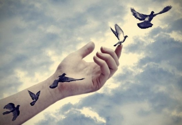 Birds-Flying (Cópia)