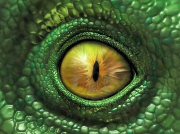 reptiles117_03_small (Cópia)