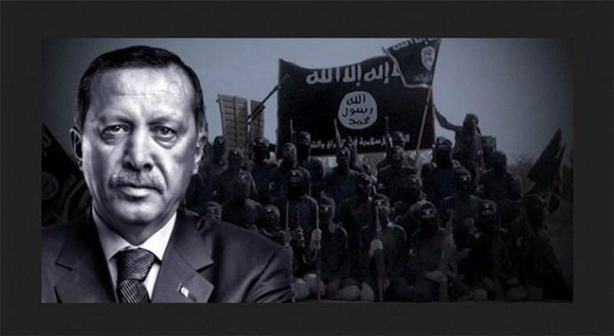 turkey_intel (Copiar)