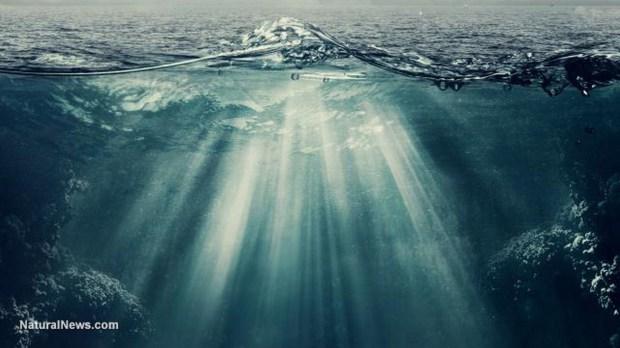underwater-ocean-copiar