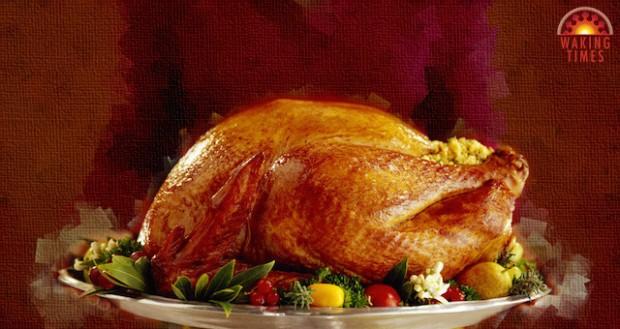 thanksgiving-turkey-1