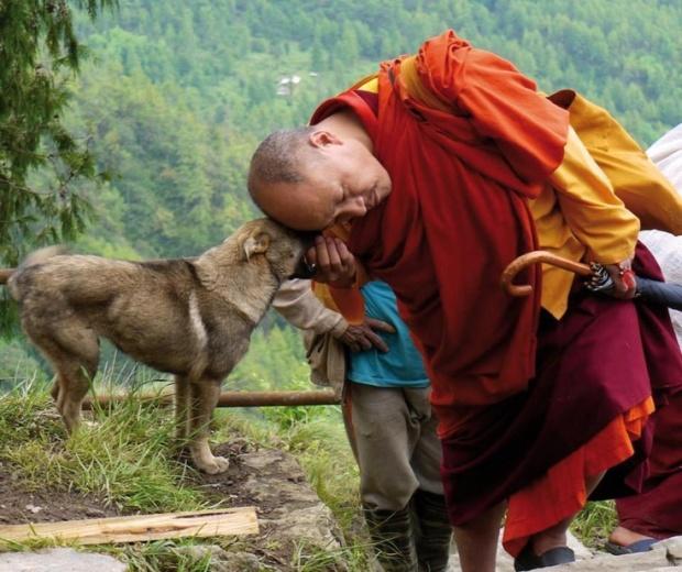 190e4c426f5678929f66980023940a08--buddhist-monk-buddhist-wisdom