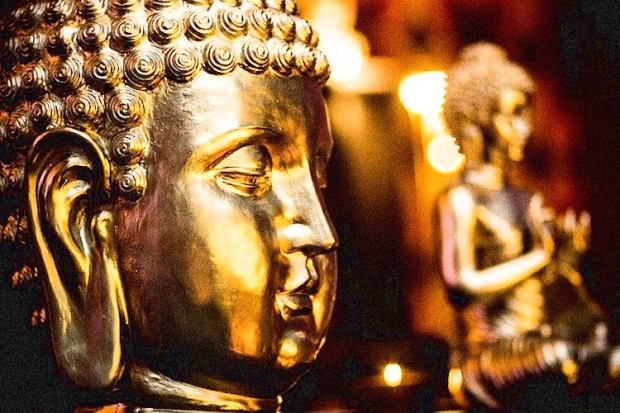 Buddha-Suffering-2