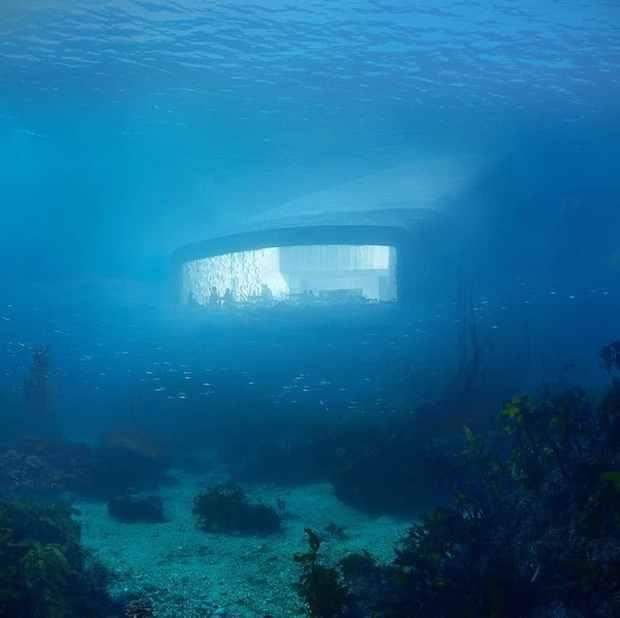 snohetta-underwater-restaurant-2
