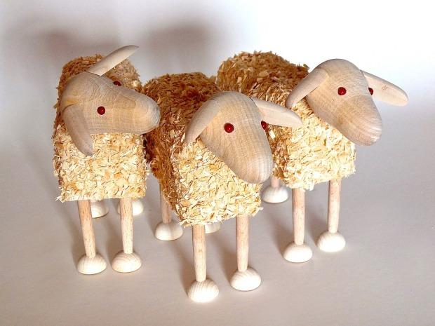 sheep-1700763_960_720.jpg