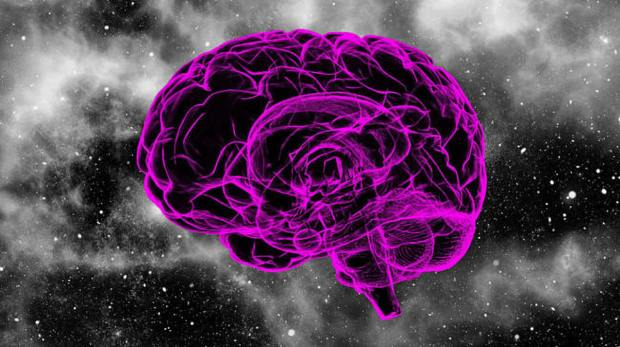 brain128_01_small.v2