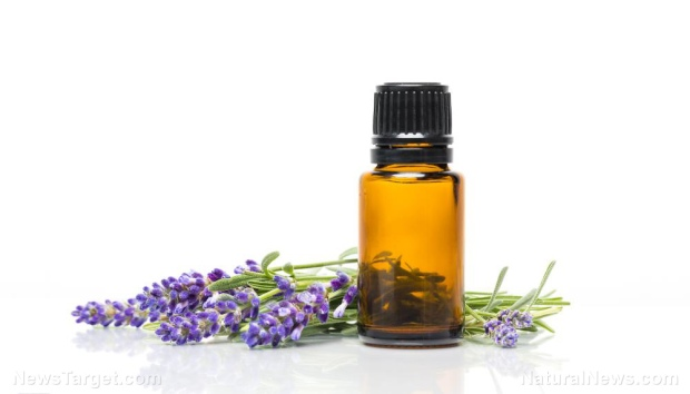 Oil-Essential-Lavender-Bottle-Alternative-Aroma-Aromatherapy.jpg
