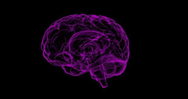 brain-1787622_1920-1200x633